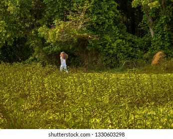A young girl walks through a Summer meadow in a park in Central New Jersey.