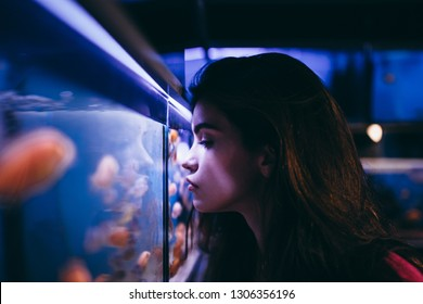 young girl is watching at the aquarium and fish in the store.