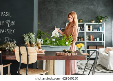 Young girl watering green herbs in her small home garden