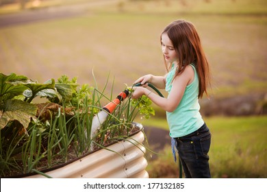 A young girl is watering her vegetable garden outdoors with a hose.