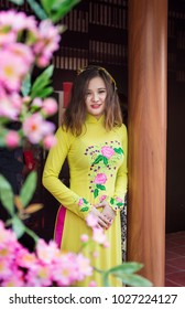 The young girl wear ao dai in Tet holiday at Viet Nam.