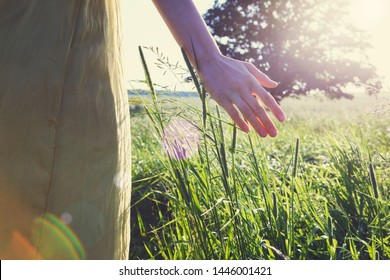 young girl wearing long silk dress enjoying nature, touching grass and wildflowers with her hand