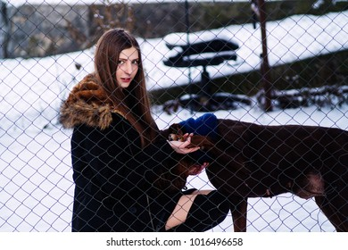 A young girl went to Doberman's old dog in a cage. Winter in cold weather.copy space. Holds the dog behind the paw