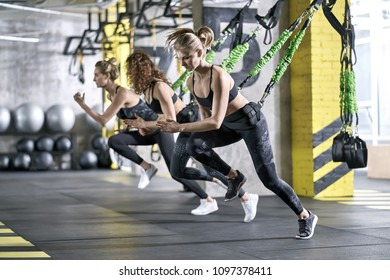 Young girls are training with goflo-trainers in the gym. They are wearing the multicolored sportswear: pants, tops and sneakers. Horizontal.
