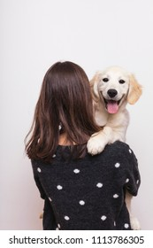 young Golden Retriever with the owner