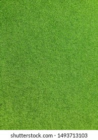 Young green artificial grass on the floor often use for indoor sport