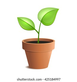 Young Green Plant in Pot Isolated on the White Backgrounds. illustration