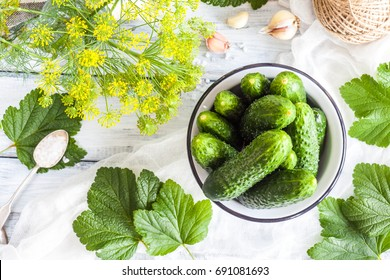 Young green small cucumbers for pickling. Marinated and canned food. Organic fresh vegetables in high key on light wooden background. Preparation for canning. Summer Pickles. Top view.