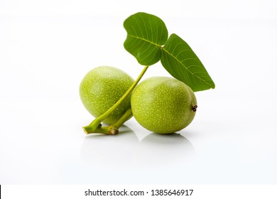Young green walnuts with leaves