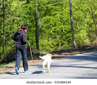 young guy running down the road with his dog Labrador Retriever