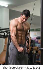 Young Hairy Muscular Fitness Bodybuilder Doing Heavy Weight Exercise For Triceps On Machine In The Gym