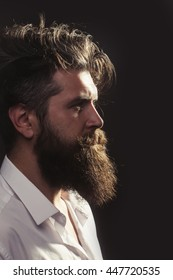 young handsome bearded man with long beard and stylish haircut in profile on dark studio background, copy space