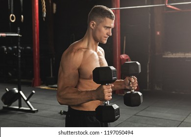 Young handsome bodybuilder working out with dumbbells. Bicep hammer curl exercise.