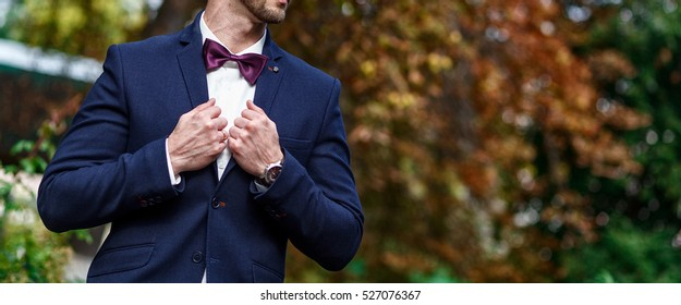 Young handsome man with a beard in luxurious white shirt with bowtie.