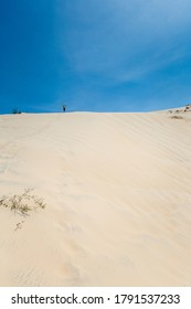 Young handsome man having fun on White sand dunes in La Gi, Phan Tiet area in Vietnam. Landscape with blue sky on the south of Mui Ne.