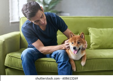 Young hansome male in blue t-shirt having fun with his lovely shiba inu dog, snuggling, stroking and petting, sitting on green couch at home. Close friendship between owner and pet. Best friend.