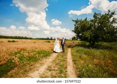 Young happy attractive married couple playful in wheat field after wedding