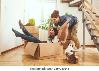 The young happy couple is moving into a new house. They are unpacking boxes with things in their new living room and having fun with their little dog.