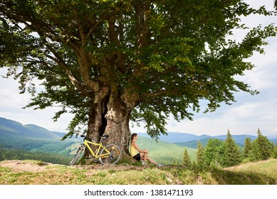 Young happy female cyclist resting near yellow mountain bike under big tree, enjoying summer day in the mountains. Outdoor sport activity, lifestyle concept