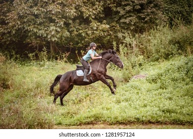 A young happy girl riding her horse. She loves the animals and joyfully spends her time in their environment.