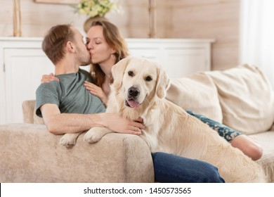 Young happy married couple nice girl and young man in casual clothes talking with his kind obedient dog in the living room of his cozy country house