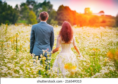 Young happy wedding couple walking in the field and holding hands