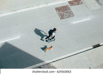 Young hipster with curly hair longboarding commuting with dog running behind on the concrete urban street white light tattoos shadow shot from above