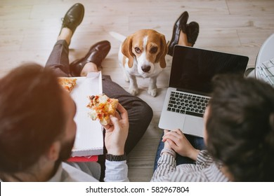 Young hipster male and female couple home eating pizza with laptop and dog