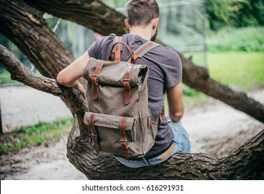 Young hipster man sitting on a tree in a park