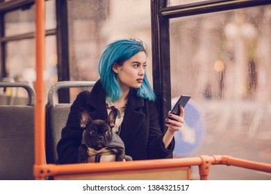 Young hipster woman sitting in city bus with her french bulldog and using mobile phone