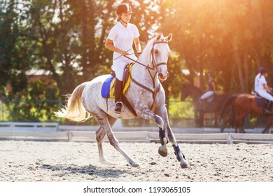 Young horse rider girl galloping on her course in show jumping competition