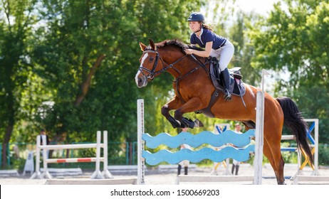 Young horse rider woman jumping over the obstacle on show jumping competition. Equestrian sport background with copy space