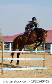 Young horsewoman on brown horse overcomes an obstacle outdoors, copy space. Equestrian sport, jumping.