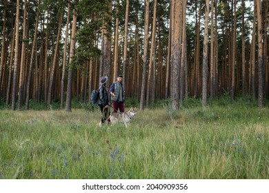 Young husband and wife walking with husky dog among pinetrees in the forest