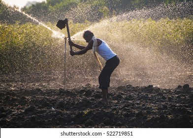 Young Indian Farmer Digging In the field in front of sprinklers, at sunset