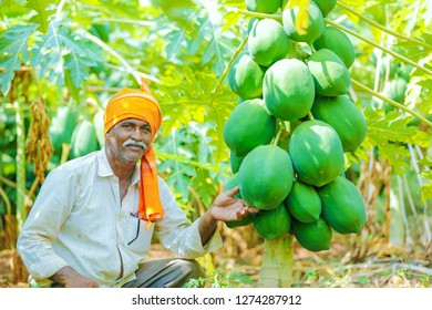 young indian farmer at papaya field