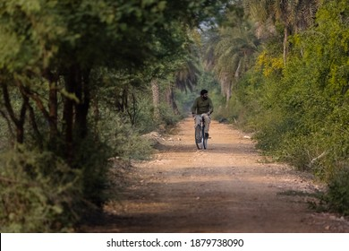 A young Indian man cycling in casual dress at the village or forest area in India. Path surrounded by dates tree and natural background.