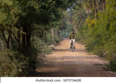 A young Indian man cycling in formal dress at the village or forest area in India. Path surrounded by dates tree and natural background.