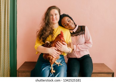 Young interracial female couple sits together with beloved domestic friend - cock and hugs each other on pink wall background. Lifestyle portrait of unusual female pet lovers. Odd f female friendship