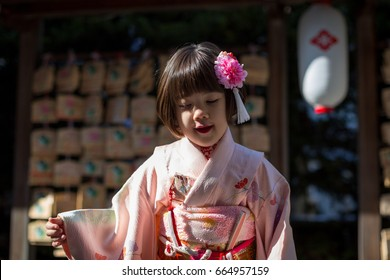 Young Japanese Girl wearing Kimono for her 5 years-old celebration in Japan.