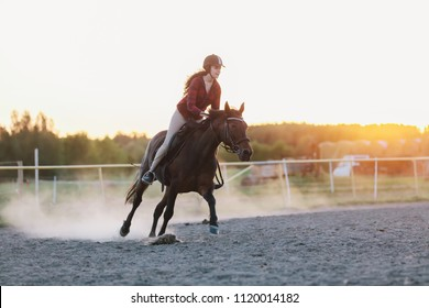 Young jockette in a helmet riding the horse in the paddock during the sunset. Horseriding.