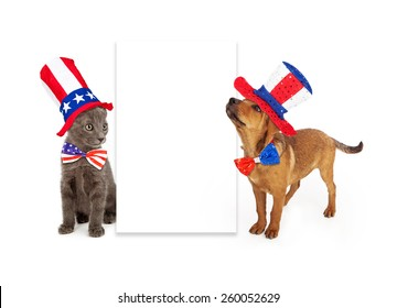 A young kitten and puppy sitting to the side of a blank white sign wearing patriotic American red, white and blue hats and ties