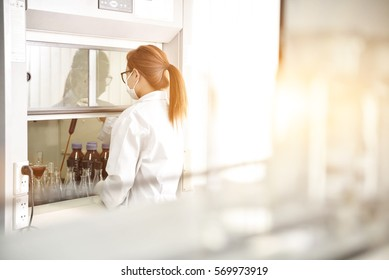 Young laboratory assistant working prepare  instrument for chemical lab experiment in Lab