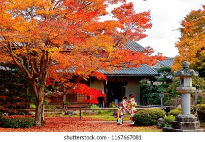 Young ladies, dressed in Kimono (a traditional Japanese attire), enjoying the autumn scenery of a Japanese garden with fiery maple trees and a stone lantern, in Genko-an Buddhist Temple, Kyoto, Japan