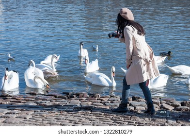 Young lady in white coat takes photos of swans by the river