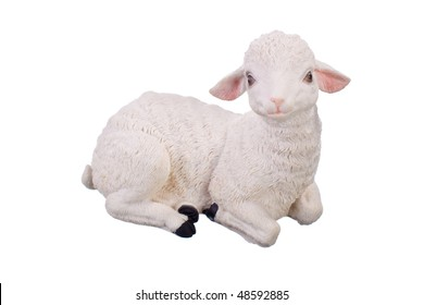 young lamb toy isolated on white background
