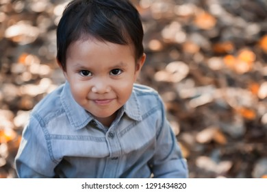 A young latino boy with a cute smile looking thoughful and friendly in a field of dried leaves during fall.