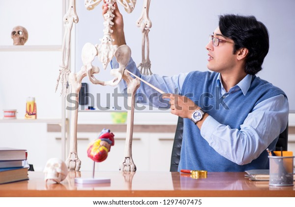 Young lecturer teacher teaching anatomy