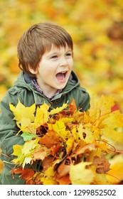 Young little boy having fun in autumn park