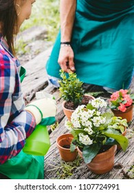 Young loving couple have fun watering flower plants on a wooden floor during spring day, they are dressed with work clothes